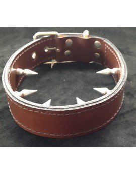 LEATHER INNER SPIKED COLLAR